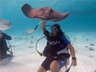 [Grand Cayman 2010 - Stingray City]